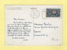 Carte Amora - Noumea - Nouvelle Caledonie - 1961 - Briefe U. Dokumente