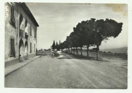 SAN PANCRAZIO VAL DI PESA - VIALE DEI PINI - NV FG - Firenze (Florence)