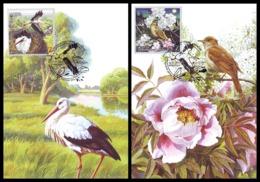 UKRAINE 2019. EUROPA: NATIONAL BIRDS. WHITE STORK, THRUSH NIGHTINGALE. Mi-Nr. 1797-98 MAXICARDS - CARTE MAXIMUM - Ooievaars