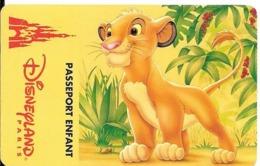 PASS-DISNEYLAND PARIS-SIMBA-V°S 049527 Valide 1JOUR Expire Le 18/01/96-TBE - Toegangsticket Disney