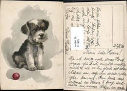 631485,Künstler Ak E. Dermitzel Hund Hundewelpe Tiere - Hunde
