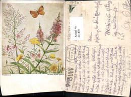 631478,Künstler Ak Mundgemalt R. De Vos Weideblumen Schmetterling Insekt Tiere - Insekten