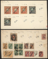 CHINA - RUSSIAN OFFICES: 2 Old Cards With Mint And Used Stamps, Fine General Quality (some Can Have Minor Defects), HIGH - China