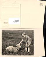 631442,Foto Ak Kind M. Schaf Tiere - Tierwelt & Fauna