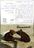 631423,Bern Junge Bären I. Bärengraben Switzerland Tiere - Bären