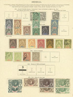 SENEGAL: Old Collection On Album Pages, Including Interesting Stamps And Of Good Catalog Value, Good Opportunity! IMPORT - Senegal (1960-...)