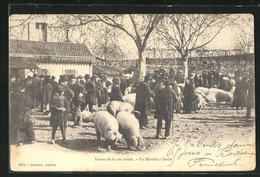 CPA Sarlat, Scènes De La Vie Rurale-un Marchè - Unclassified