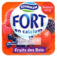 "Opercule Cover Yaourt Yogurt "" Soummam "" FORT Forest Fruits Old Design Yoghurt Yoghourt Yahourt Yogourt - Koffiemelk-bekertjes"