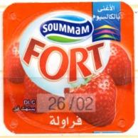 "Opercule Cover Yaourt Yogurt "" Soummam "" FORT Fraises Strawberries Old Design Yoghurt Yoghourt Yahourt Yogourt - Milk Tops (Milk Lids)"