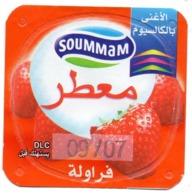 "Opercule Cover Yaourt Yogurt "" Soummam "" FORT Aromatisé Fraise Old Design Yoghurt Yoghourt Yahourt Yogourt - Milk Tops (Milk Lids)"