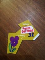 Magnet Le Gaulois Nouveau Département 31 HAUTE GARONNE TOULOUSE La Violette. VERT - Magnets