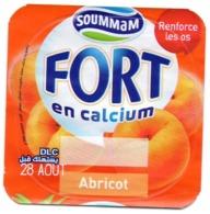 "Opercule Cover Yaourt Yogurt "" Soummam "" FORT "" Abricot Apricot New Design Yoghurt Yoghourt Yahourt Yogourt - Milk Tops (Milk Lids)"