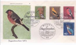 AK-div.29- 164    Ersttagsbrief - Stempel - Jugendmarke 1963 - BRD