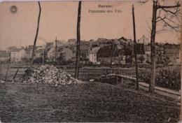 Berzee (Walcourt) Panorama Des Tris 19?? Ed. Hermans - Walcourt