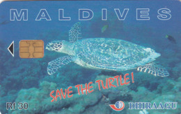 MALDIVES - Save The Turtle!, CN : 256MLDGIB, Used - Maldive
