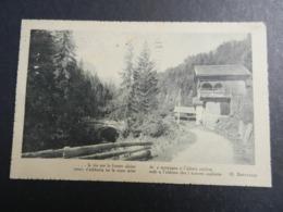 19994) ITALIA LOCALITA' DA IDENTIFICARE FRASE BERTACCHI LA VIA PER LE FORESTE ALPINE... VIAGGIATA 1922 - Zonder Classificatie