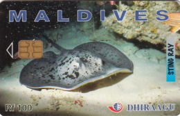 MALDIVES - Sting Ray, CN : 256MLDGIC, Used - Maldiven