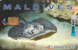 MALDIVES - Sting Ray, CN : 335MLDGID, Used - Maldiven