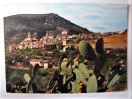 ESPANA - ISLAS BALEARES - MALLORCA - VALLDEMOSA - Mallorca