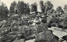 60 - FORET D'ERMENONVILLE - Ermenonville