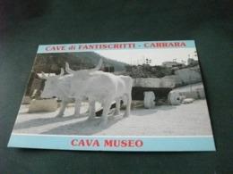 CARRO TRAINATO DA DUE BUOI IN MARMO CAVA MUSEO CAVE DI FANTISCRITTI CARRARA - Musei