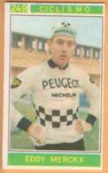 N. 249 Eddy Merckx - Ciclismo - Campioni Dello Sport Panini 1967-68 - Panini