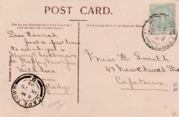 SS.Africa, CoGH, St Georges Park, Port Elizabeth PPC Used, 1/2d, ,LAWRENCE STREET P.E.DE 22 03 > CAPETOWN DE 25 03 - South Africa (...-1961)