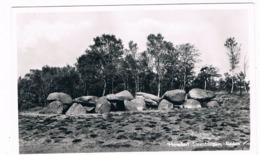 HUN-21   RODEN : Hunebed Steenbergen ( Menhir, Dolmen) - Dolmen & Menhirs