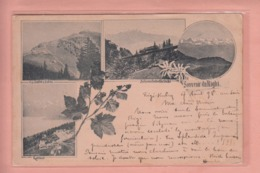 OUDE POSTKAART ZWITSERLAND - SCHWEIZ - SUISSE -     1898 - RIGI-KULM  - SOUVENIR DU RIGHI - LU Lucerne