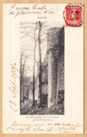 CPA Provins, Les Echauguettes Des Fortifications Pres Le Trou-au-Chat, Gel. 1908 - Provins