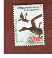 INDONESIA   - SG 2468    -    1998  WATERFOWL: AYTHYA AUSTRALIS  - USED ° - Indonesia