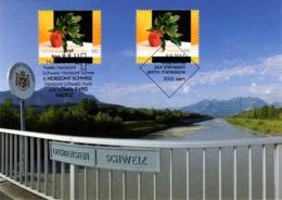 Maximumkarte 2011 Liechtenstein-Schweiz Frucht07 / Kunst / Art / Arte - Cartes-Maximum (CM)