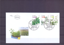 Israel - FDC - Medicinal Herbs And Spices - 17/12/2006   (RM14719) - Medicinal Plants