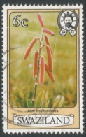 Swaziland. 1980 Flowers. 6c Used. SG 345A - Swaziland (1968-...)