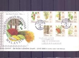 Malaysia - Tanam-Tanaman-Pertanian - Johor 25/10/86    (RM14896) - Fruits