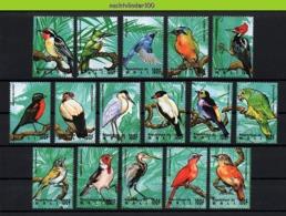 Nff074 FAUNA VOGELS KINGFISHER WOODPECKER HERON PARROT BIRDS VÖGEL AVES OISEAUX QWMA 1995 PF/MNH - Vögel