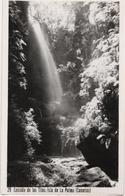 Cascada De Los Tilos - Isla De La Palma - La Palma