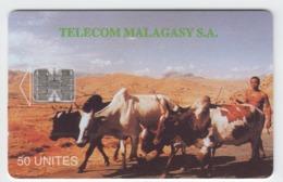 Madagascar- Malagasy -  Phonecard - Superb Fine Used Cattle - Madagascar