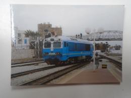 D168406 Train - Railway Station - Bahnhof  - Gare -Hungarian Postcard  -Tunisia SNCTF - Tunis - Trains