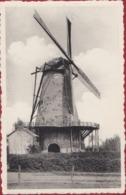 Geel Elsum Stenemolen Windmolen Moulin A Vent Windmill Antwerpse Kempen (In Zeer Goede Staat) - Geel