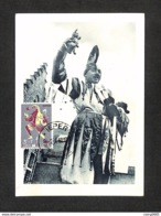 BELGIQUE - BELGIE - Carte MAXIMUM 1960 - YPRES - La Fête Des Chats - Maximumkarten (MC)