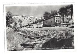 CARTOLINA DI SAN GREGORIO MATESE - CASERTA - 2 - Caserta