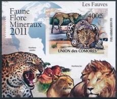 D - [39364]TB//ND/Imperf-Comores 2011 - BL2166, Faune, Les Fauves, Léopard, Panthère, Animaux. - Raubkatzen