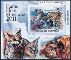 D - [39431]TB//ND/Imperf-Comores 2011 - BL2148, Faune, Les Chats Sauvages, Léopard, Panthère. - Raubkatzen