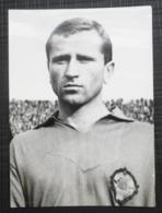 NK DINAMO ZAGREB, Željko Perušić ORIGINAL PHOTO - Sports