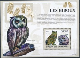 D - [39741]TB//**/Mnh-c:21e-Comores 2009 - BL161, Faune, Oiseaux, Rapace Nocturnes, Hiboux & Chouettes. - Eulenvögel