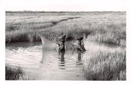 Guinea Bissau - Women Fishing - REAL PHOTO Foto Serra 42. - Guinea-Bissau