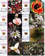 8 TC Telecard Roumanie Romania, Thème Fleurs Plantes Flowers - Romania