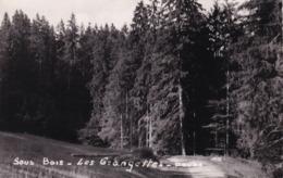 Malbuisson, Oye Et Pallet, Les Grangettes, Sous Bois - Autres Communes