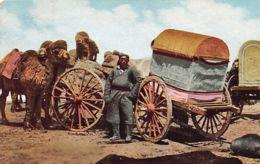 Mongolia - Carts And Camels, Inner Mongolia. - Mongolia